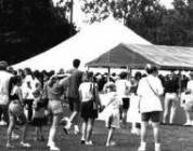 Crowd at festival